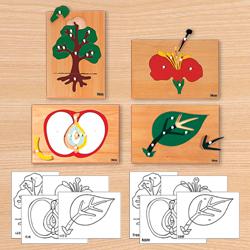 식물퍼즐-몬테소리교구 어린이집 유치원 교구