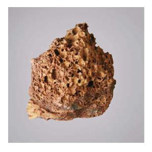 화산암석조각 - 4개이상 주문가능 -