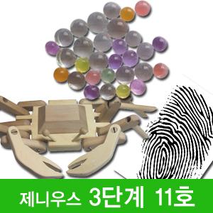 [제니우스 과학]3단계 11호(6~7세)/워크북+원목교구1종+실험교구2종